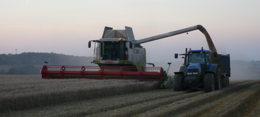 Combining by night